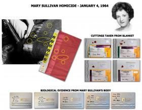 Evidence from the Mary Sullivan murder case.