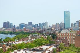 The City of Boston plans to plant more than 100,000 trees by 2030 to lessen the effects of climate change.