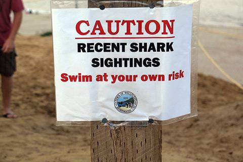 A sign warns swimmers at Cahoon Hollow Beach in Wellfleet, Mass., on Aug. 15, 2012.