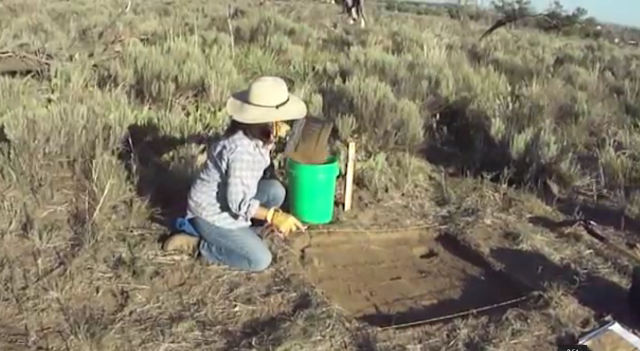 Kirsten Leong putting excavated material into buckets to be screened