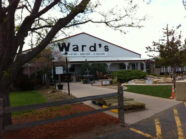 Welcome to Ward's Garden Center, step inside for a tour