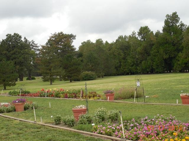 Trial grounds at the Hays Agriculture Research Center