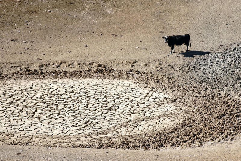 The Texas Drought Is Effectively Over But Aquifers Are Slow To Recharge