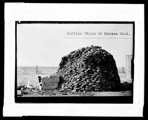 Buffalo Chips or Kansas Coal?
