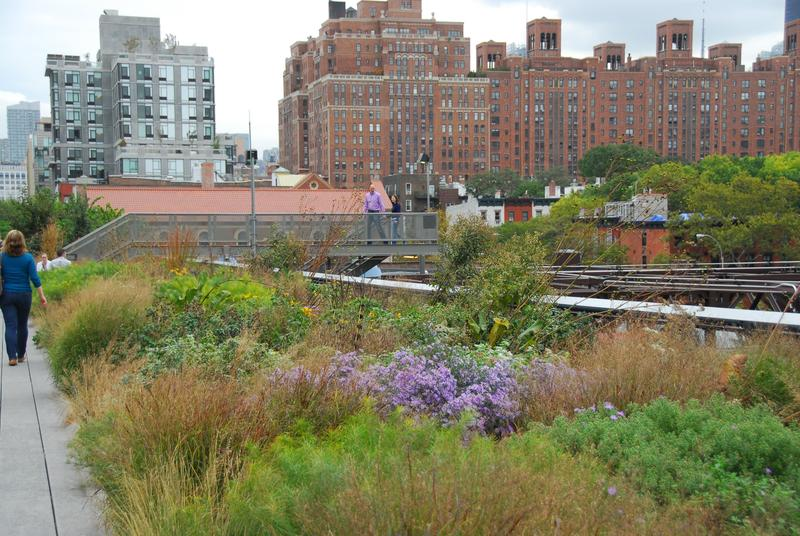Growing On The High Plains High Line Low Line Hppr