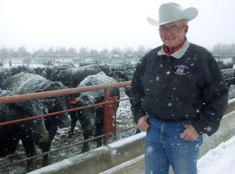 Henry Gardiner stands by a pen of cattle at Gardiner Angus Ranch in 2002. Gardiner was a pioneer in the Angus industry. He died in January 2015.