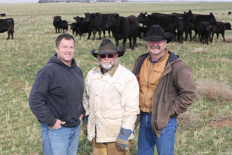 Brothers Garth, left, Greg and Mark Gardiner continue the family tradition of Gardiner Angus Ranch near Ashland.