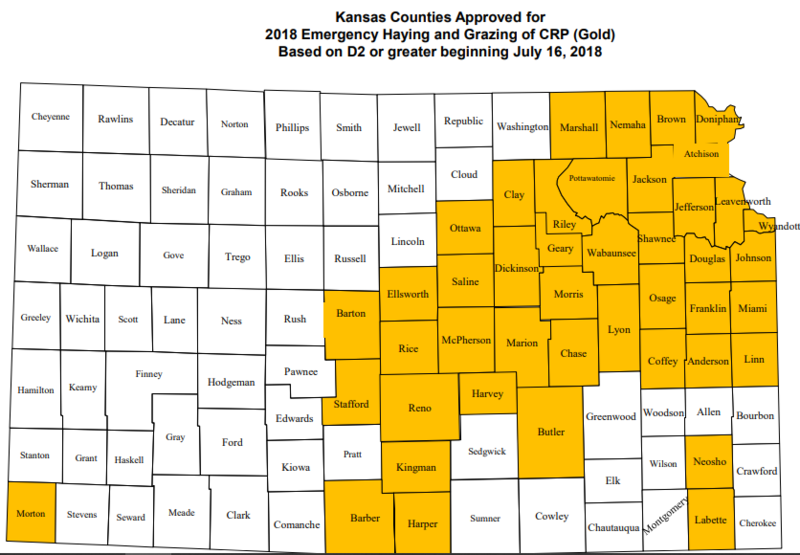 Yellow indicates the Kansas counties authorized for emergency haying and grazing use of Conservation Reserve Program land