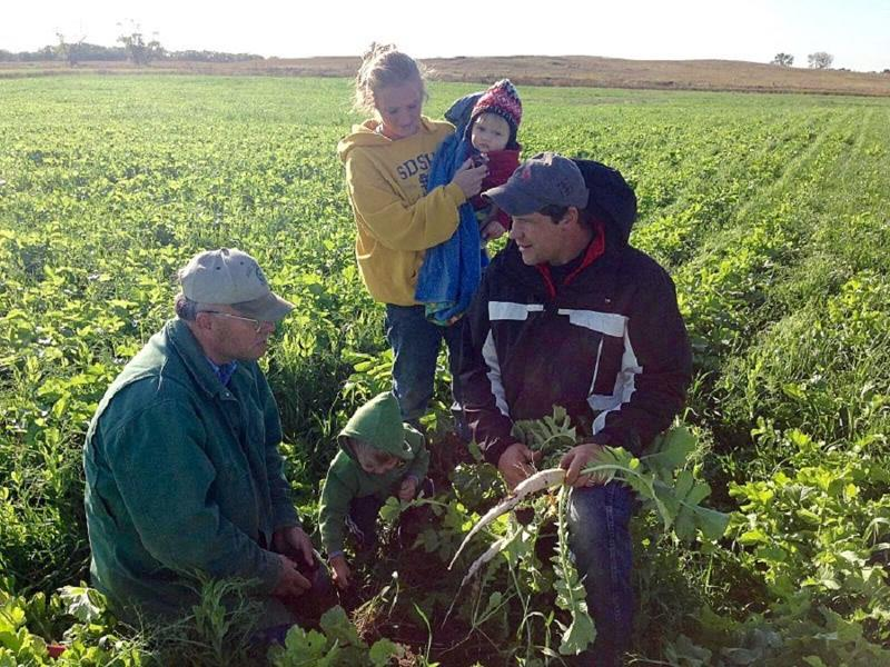 The Hebers of Spink County, SD, plan for future generations by nurturing soil health today.
