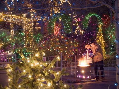 winter garden aglow tradition draws thousands to the idaho botanical garden boise state public