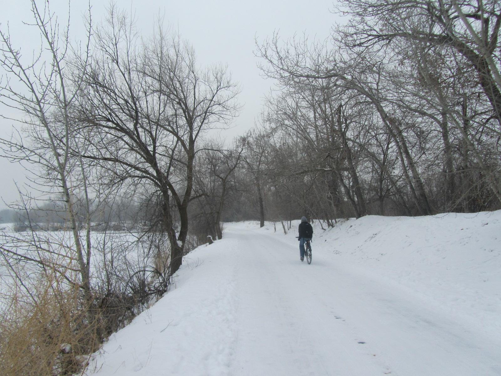Boise's Bike Culture Booms - Even in Winter! | Grow  Ideas