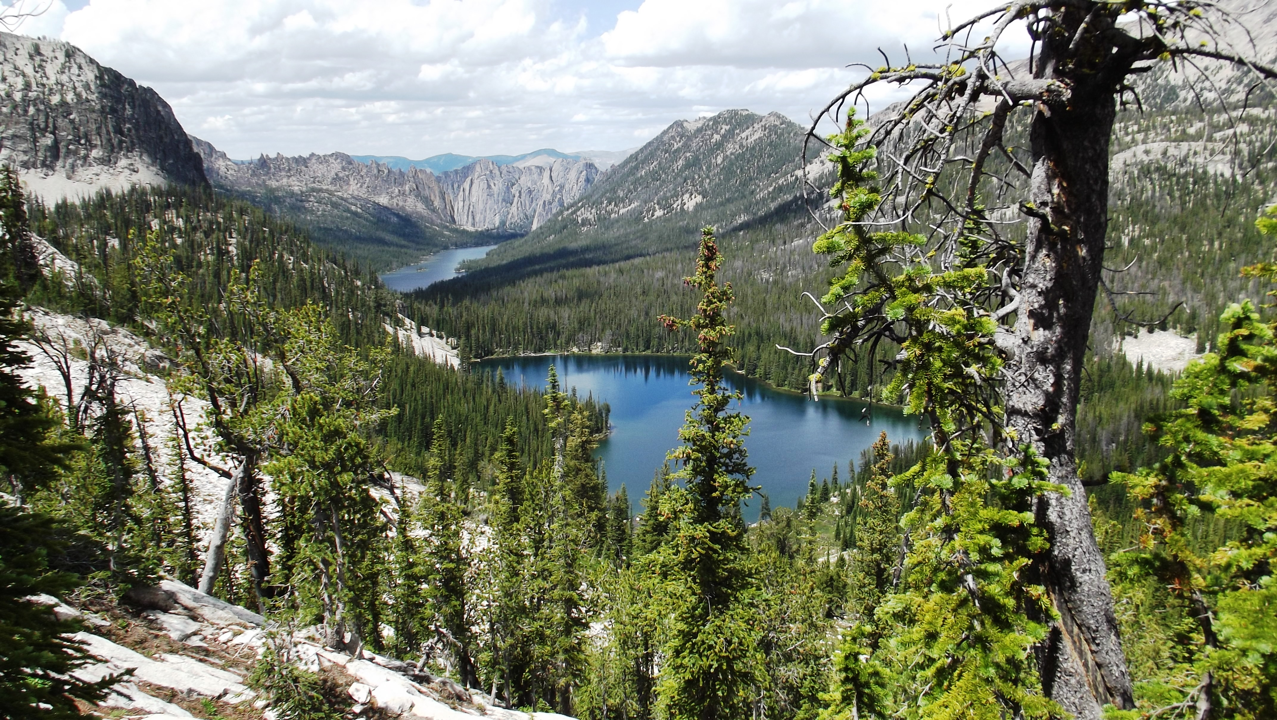 the american wilderness The idea of protecting nature for nature's sake began to gain more recognition in the 1930s with american writers like aldo leopold, calling for a land ethic and urging wilderness protection.