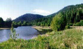 The Kootenai River in northern Idaho.