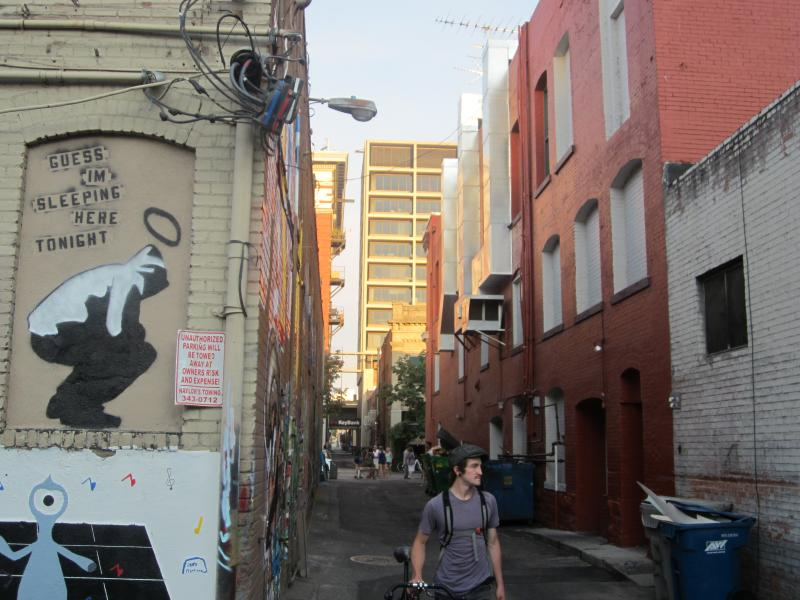 The murals throughout the alley between 8th and 9th Street and Bannock and Idaho are hard for passers-by not to notice.