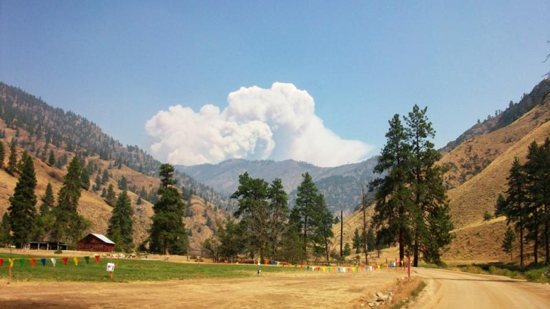 The Mustang Complex is made up of five wildfires that merged into one. Mandatory evacuations are in place as the fire moves closer to homes.