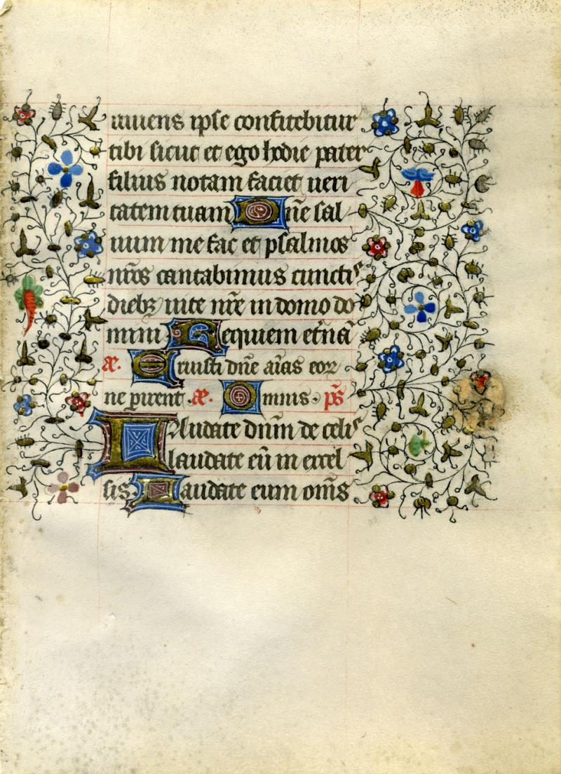 Manuscript page from a book of prayer, with initial caps decorated with gold leaf and tempera; and a botanical border with very fine ink work gold leaf and tempera. Paris or Bruges, early 15th century.   Note the tiny carrot in the left margin.
