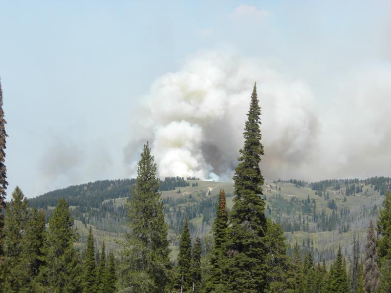 Trinity Ridge Fire