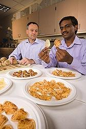 Researchers Godfrey Miles, ARS, (left) and Venkatesan Sengoda, Washington State University, evaluate symptoms in fried chips made from potatoes infected with zebra chip. (USDA)