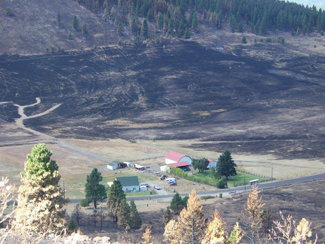 Some of the scorched earth and trees from the Taylor Bridge fire not far from Liberty, Wash.