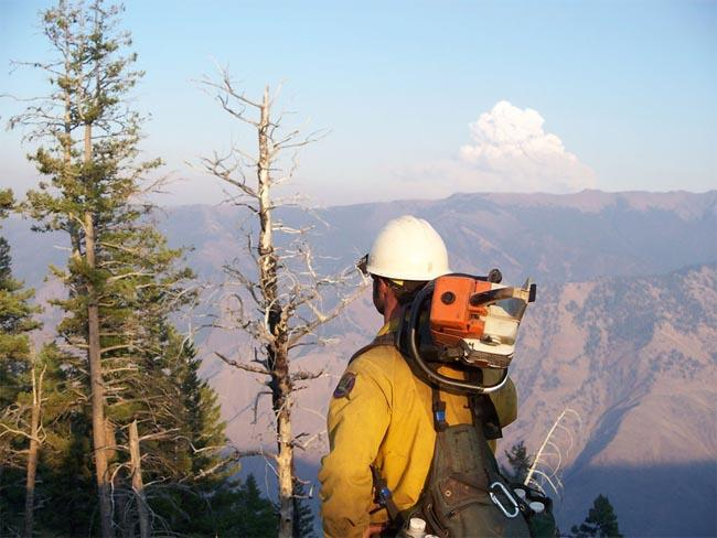 The influx of firefighters to a wildfire can offset economic damage to tourism and natural resources.