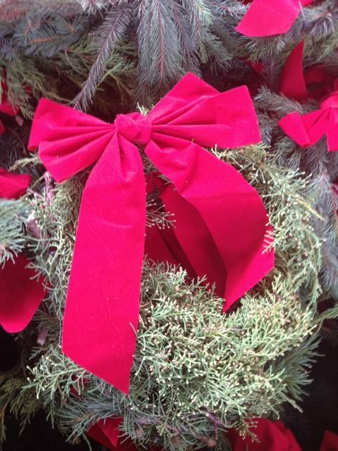 Different varieties of evergreen boughs were brought from North Idaho to supplement the Wreaths Across America project.