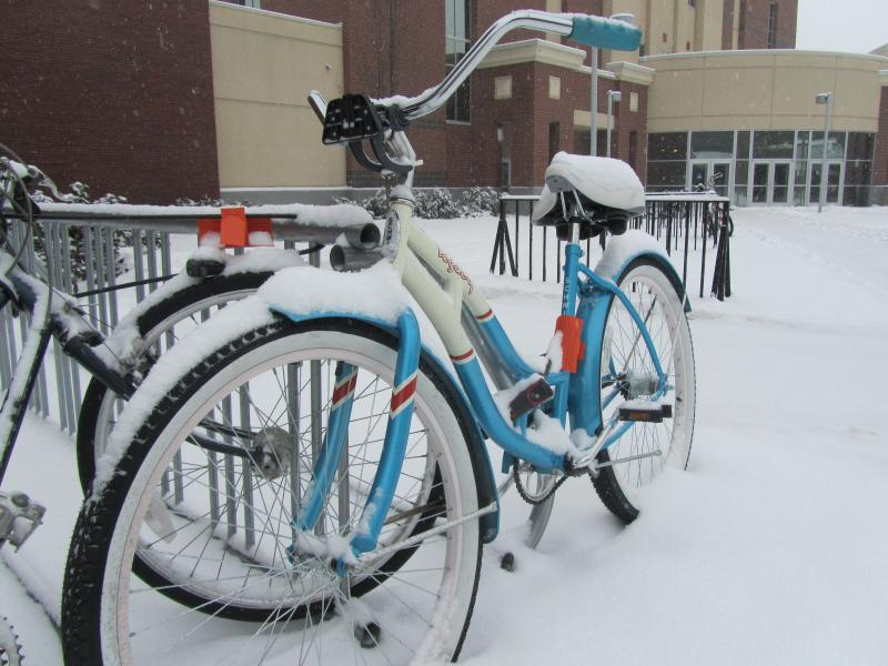 Bikes at Boise State University accumulating some precipitation during this afternoon's snow.