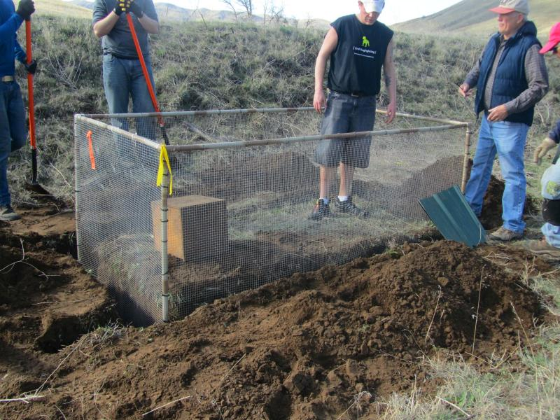 A trench is dug and the wire pens, or temporary squirrel homes, are set in the ground.
