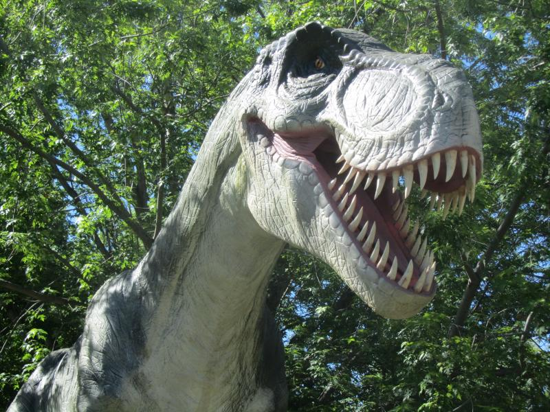 Animatronic dinosaurs have come to Zoo Boise.