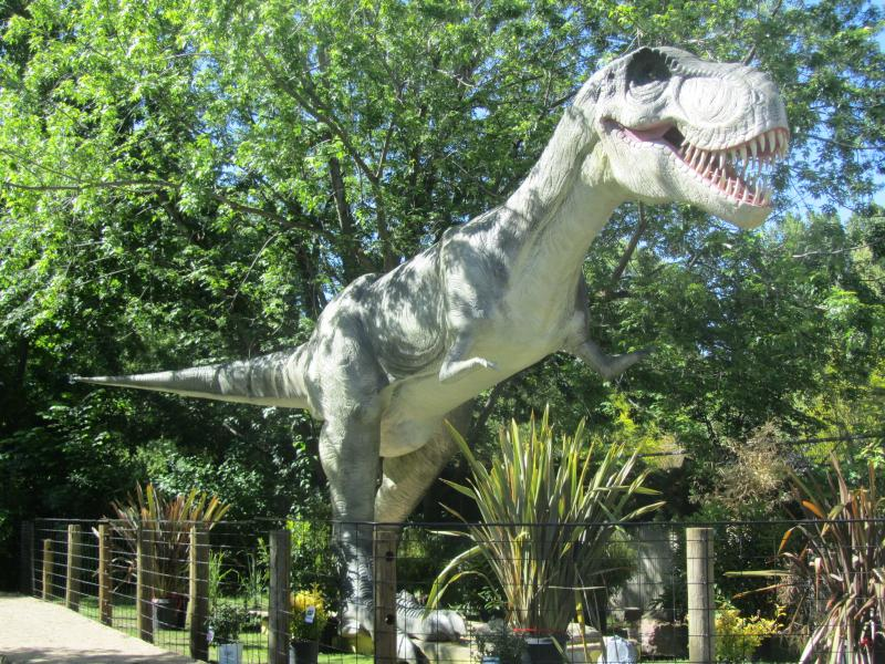 The T-Rex stands 40 feet long and 18 feet tall.