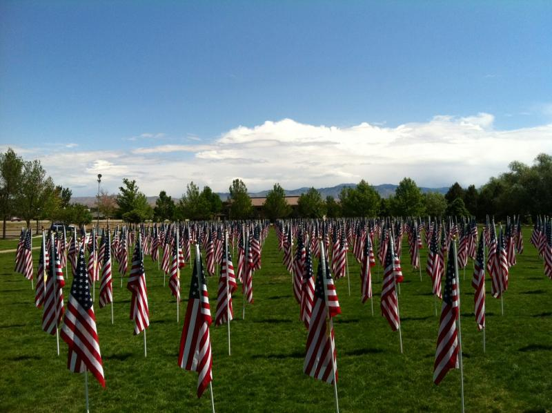 The Eagle Field of Honor has 600 flags that represent the men and women who have served the U.S. The flags will be on display through Tuesday at 4 p.m.