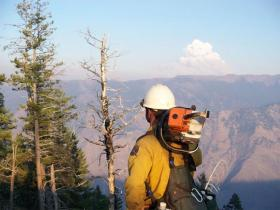 Wildfire, fire fighter