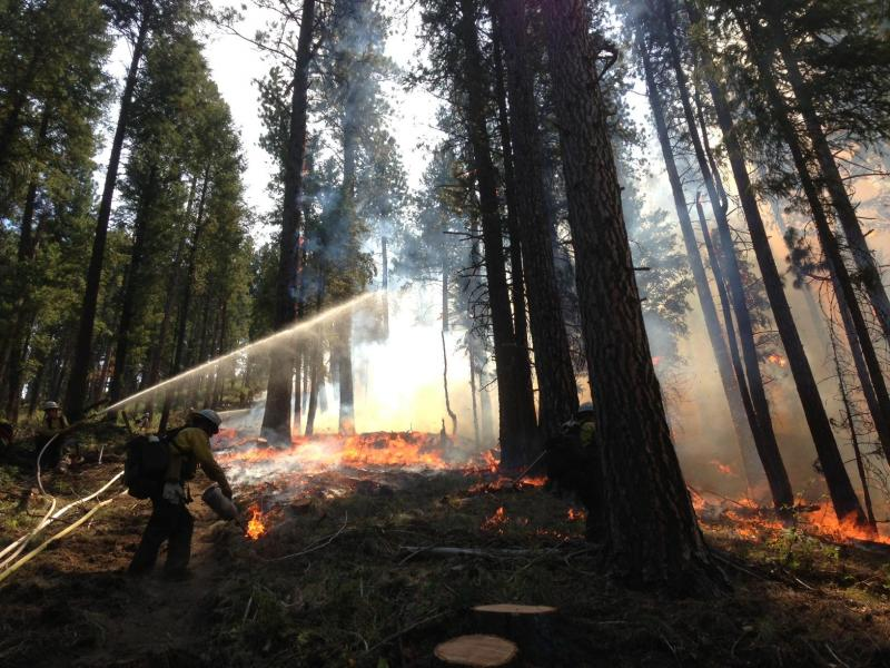 Wildfires, Pine Creek Fire