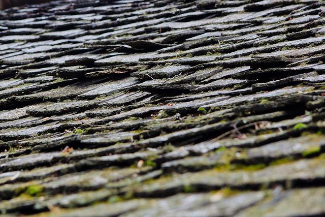 wood roof, cedar shake