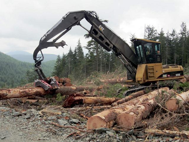 timber, logging, equipment