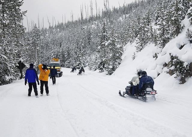 Snowmobiles, Yellowstone