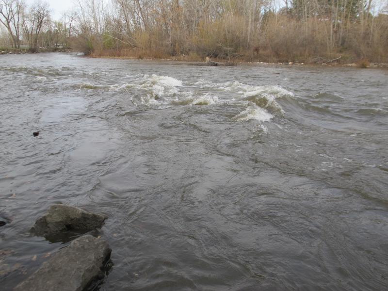 water, boise river
