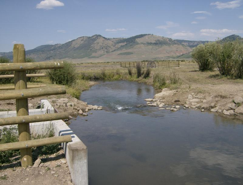 One of the Upper Blackfoot River tributaries where updated irrigation equipment is helping Yellowstone Cutthroat Trout bounce back.
