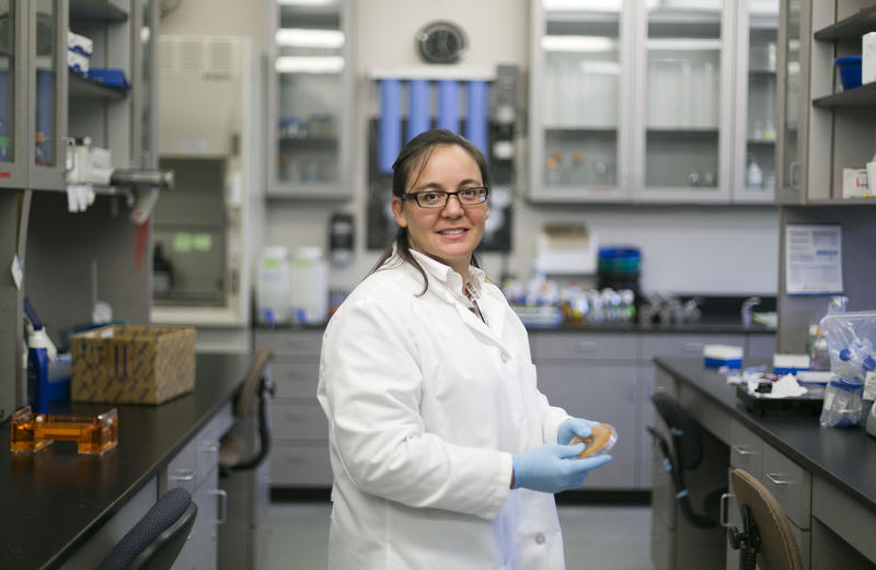 Boise State University researcher Juliette Tinker works in the lab where she has developed a vaccine that may protect dairy cows from staph infections.