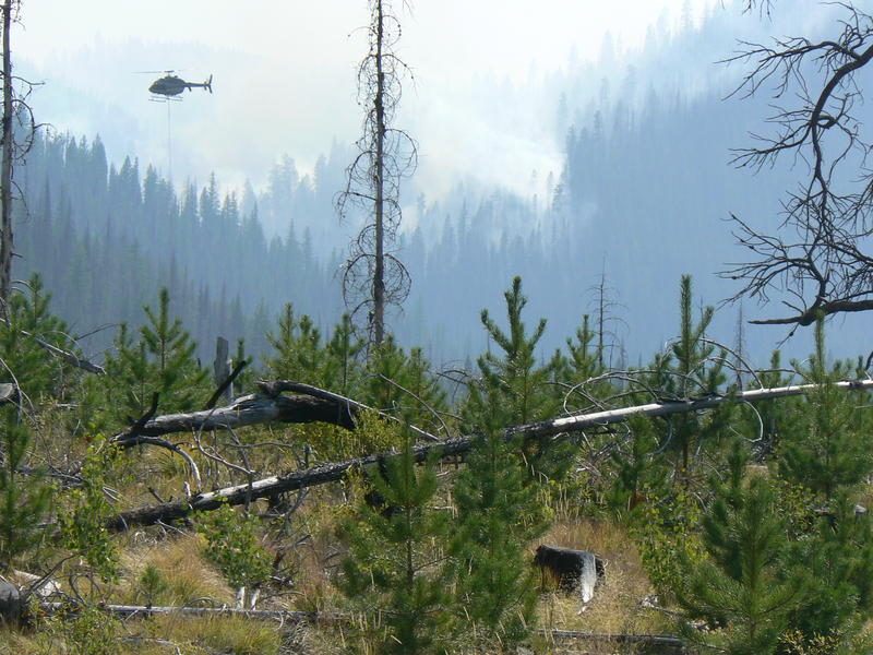 The Cougar Fire near Warm Lake is providing some of the smoke affecting Idaho.