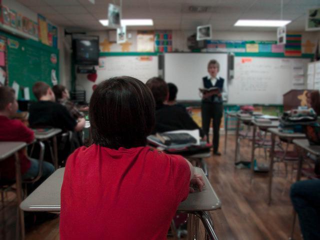 learning elementary student teacher