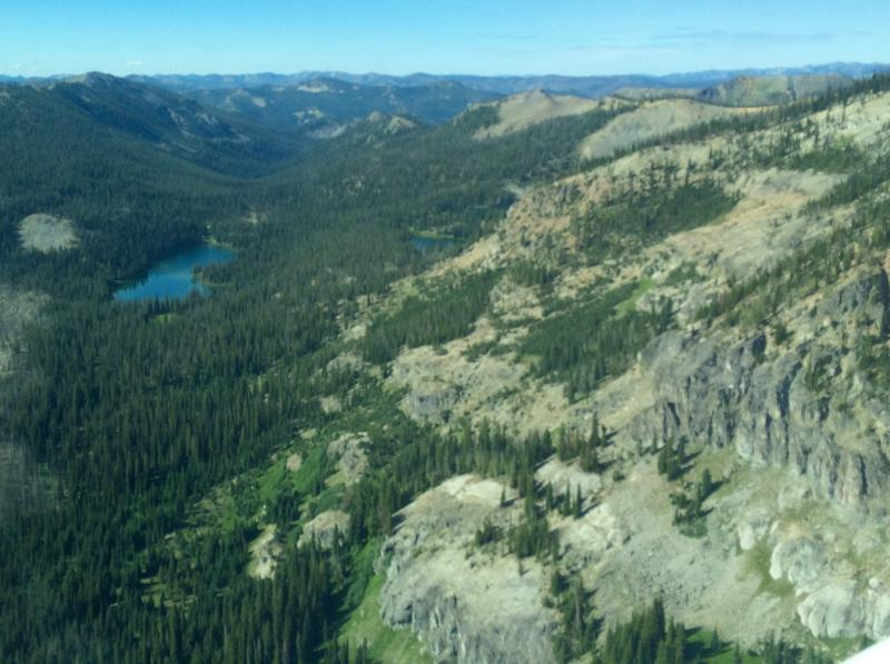 View from a plane over the Frank Church Wilderness.