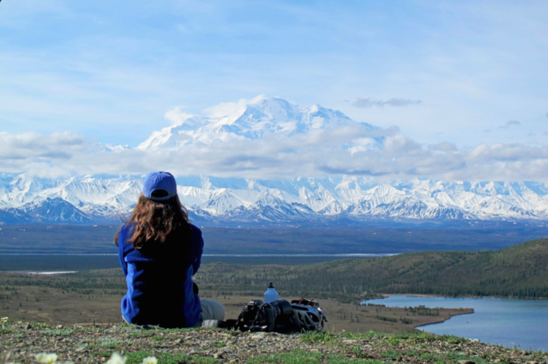"""Denali National Park is my favorite (so far). Took 8 trips to finally see the Great One."" -- Nancy DeWitt"