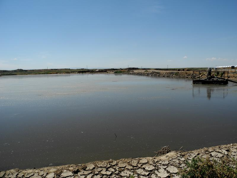 This man-made lagoon is a typical way of storing waste from cow manure and urine on large dairies. The standard from the USDA includes a compacted clay soil liner that is meant to keep the waste from seeping into the soil.