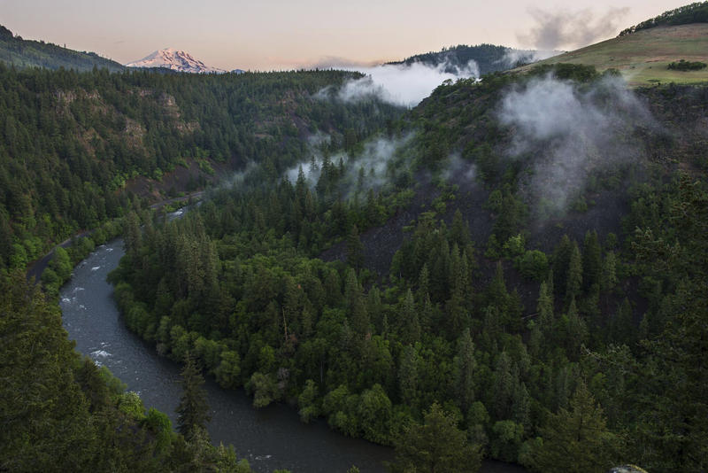 The Nature Conservancy has created maps identifying key landscapes in the Pacific Northwest most likely to sustain native species amid climate change and is distributing money to protect private lands through use-limiting easements or outright purchases.