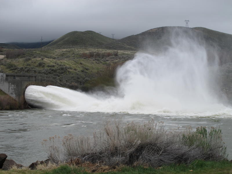 Here, water shoots out of Lucky Peak Dam into the Boise River, which is past flood stage this spring due to too much snowpack.