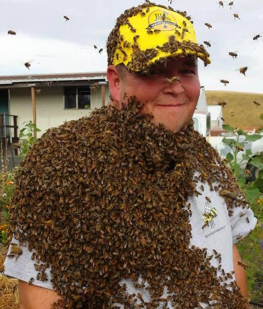 Mark Davis, founder of the Treasure Valley Bee Rescue.