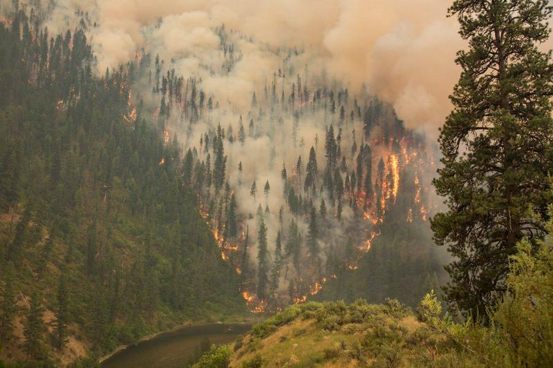 The Pioneer Fire approaches the South Fork of the Payette River in 2016. The wildfire cost more than $95 million and took several months to put out.