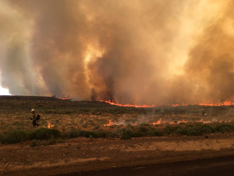 The Lava Flow wildfire burned about 23,000 acres east of Idaho Falls. It was contained Aug. 6. So far, eastern Idaho rangeland has seen more dangerous fire activity than southern or central Idaho forests.