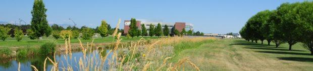 The College of Western Idaho has the highest remediation rate of Idaho's two- and four-year colleges.