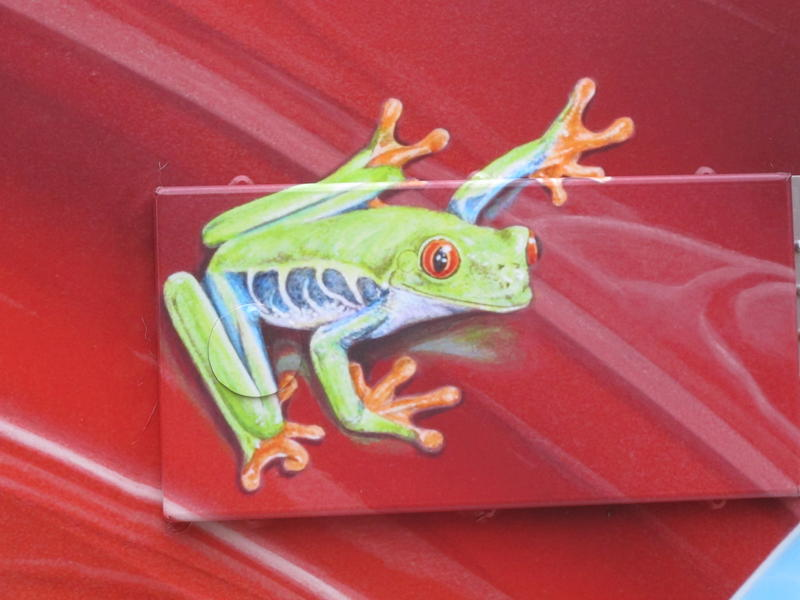 "Close up of a frog on one side of ""Car Hop, King of the Road, Woody Woodpecker and T Bird"" by Randy Van Dyck."